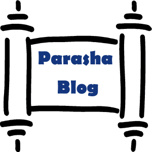 Parasha Blog